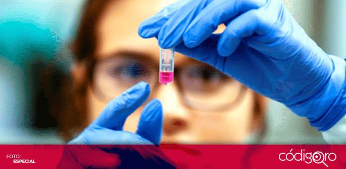 La OMS señaló como positivos los avances de la vacuna de Oxford, pero no se puede esperar a que haya una vacuna efectiva