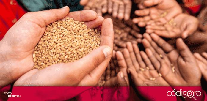 Un estudio de la FAO señaló que en el mundo 690 millones de personas sufren hambre, siendo la región del Caribe y Latinoamérica
