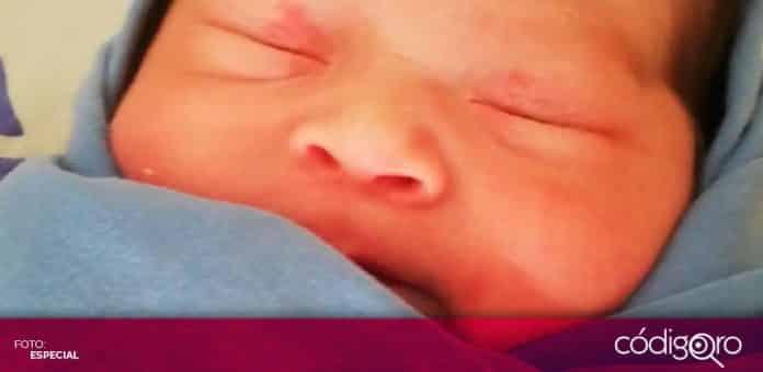 nacimientos