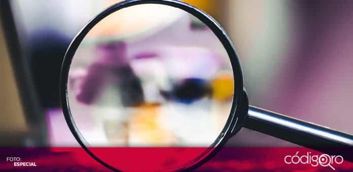 Nueve personas se han registrado como aspirantes para encabezar Infoqro. Foto: Especial