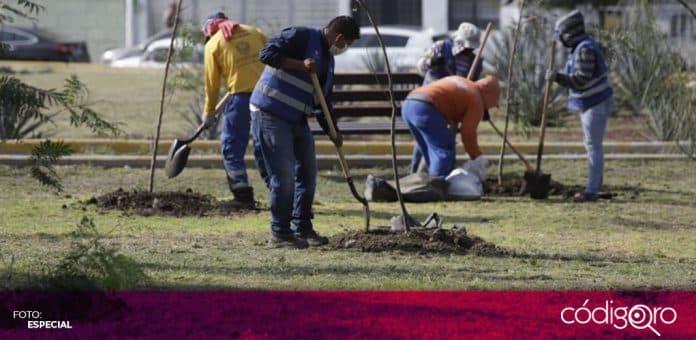 El municipio de Querétaro recibió el reconocimiento