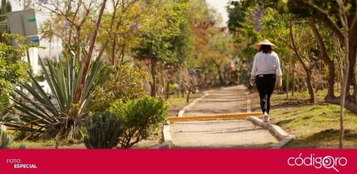 El municipio de Querétaro recibió de OXXO el sistema de riego del Pulmón Gobernadores. Foto: Especial