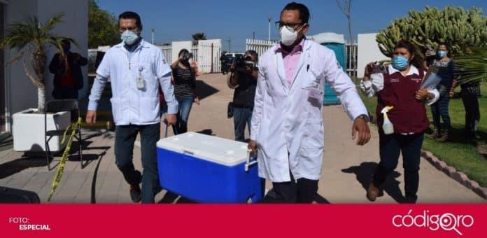 Más de 8 mil adultos mayores fueron vacunados contra COVID-19 en el municipio de Tequisquiapan. Foto: Especial
