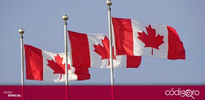 El Gobierno de Canadá exigirá que todos los automóviles sean cero emisiones en 2035. Foto: Especial