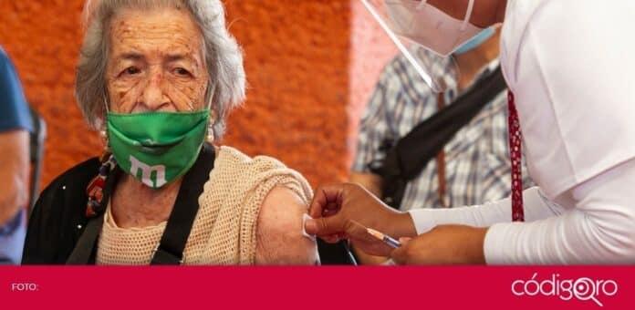 Aplicarán segunda dosis de vacuna contra COVID-19 a adultos mayores del municipio de Querétaro. Foto: Obture Press