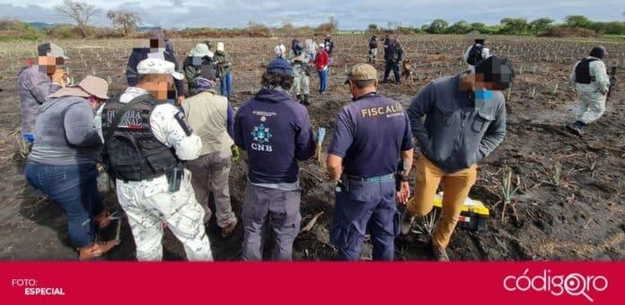 Más de 300 cadáveres han sido recuperados de fosas clandestinas en México durante este año. Foto: Especial