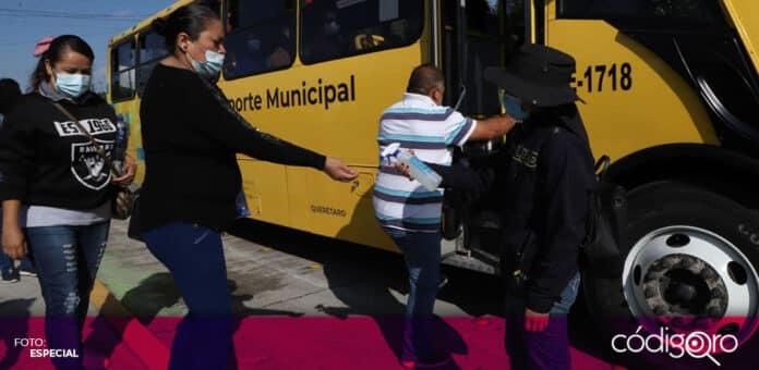 El municipio de Querétaro ha realizado 140 mil traslados durante las jornadas de vacunación. Foto: Especial